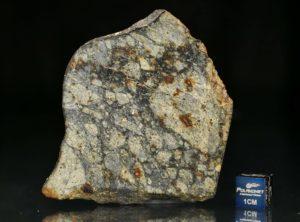 NWA 5495 (27.22 gram)