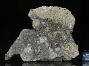 NWA 13235 (21.77 gram)