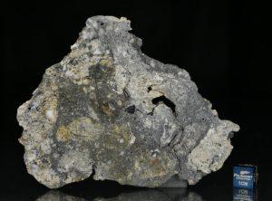 NWA 13235 (33.61 gram)