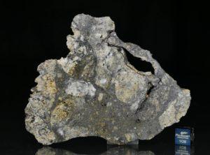 NWA 13235 (28.41 gram)