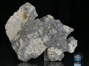 NWA 13235 (34.18 gram)