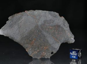 NWA 13267 (28.64 gram)
