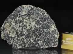 NWA 13367 (3.32 gram)