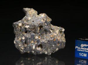 NWA 13278 (7.45 gram)