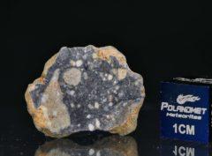NWA 11421 (2.718 gram)