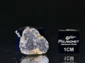 NWA 11421 (1.165 gram)