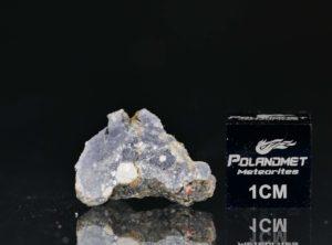 NWA 11421 (1.543 gram)