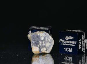 NWA 11421 (0.778 gram)