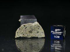 NWA 7317 (1.89 gram)