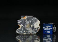 NWA 11421 (2.747 gram)