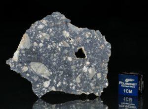 NWA 11421 (8.93 gram)