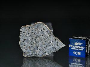 NWA 13266 (1.099 gram)