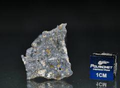 NWA 13278 (1.67 gram)