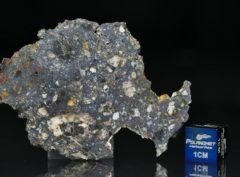 NWA 13278 (9.10 gram)