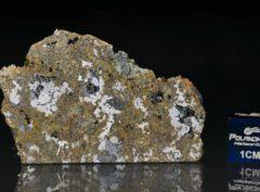 ŁOWICZ (12.47 gram)