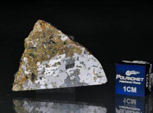 ŁOWICZ (9.15 gram)