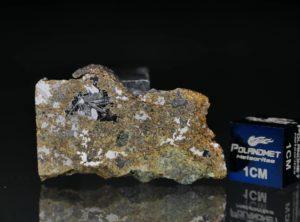 ŁOWICZ (6.45 gram)