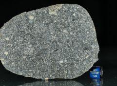 ABA PANU (29.38 gram)