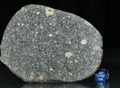 ABA PANU (33.72 gram)