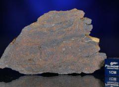NWA 6308 (31.72 gram)