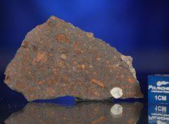 AL HAGGOUNIA 004 (9.84 gram)