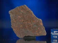AL HAGGOUNIA 004 (9.57 gram)