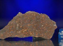 AL HAGGOUNIA 004 (11.24 gram)
