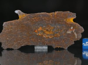 CANYON DIABLO SHALE (18.01 gram)