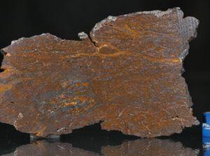 CANYON DIABLO SHALE (28.47 gram)