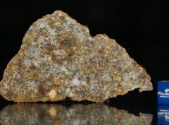 NWA 11386 (16.15 gram)