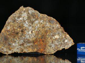 NWA 11386 (17.25 gram)