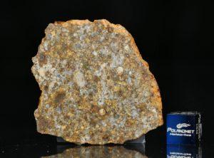 NWA 11386 (11.30 gram)