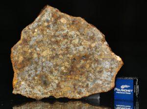 NWA 11386 (14.05 gram)
