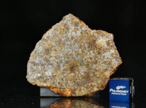 NWA 11386 (11.59 gram)