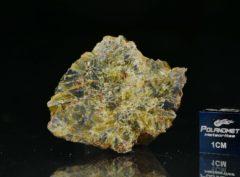 NWA 8107 (18.89 gram)