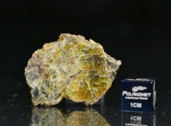 NWA 8107 (8.24 gram)