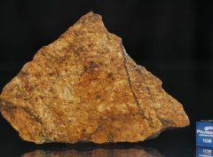 NWA 8757 (28.67 gram)