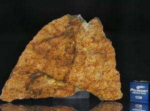 NWA 8757 (18.90 gram)