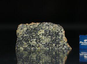 NWA 13367 (2.00 gram)