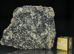 NWA 13367 (4.35 gram)