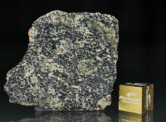 NWA 13367 (3.81 gram)