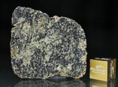 NWA 13367 (3.69 gram)