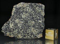 NWA 13367 (4.48 gram)