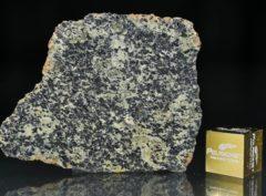 NWA 13367 (4.31 gram)