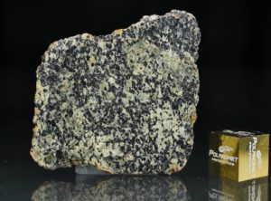 NWA 13367 (3.99 gram)