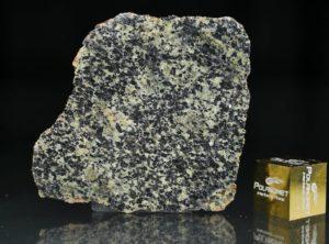 NWA 13367 (4.30 gram)