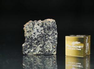 NWA 13367 (0.95 gram)