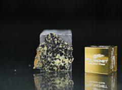 NWA 13367 (0.65 gram)