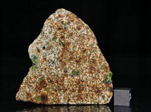 Erg Chech 002 (10.77 gram)