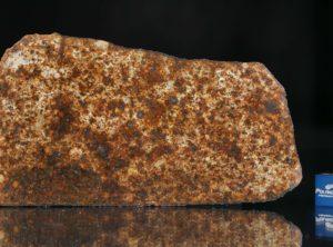 NWA 13165 (43.85 gram)